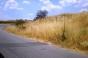 Земя с лице на асфалтов път в с. РИЛЦИ