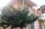 Къща за продажба в Струмско с акт 16